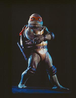 sisti_turtle